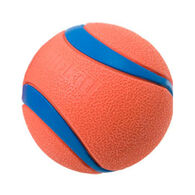 Chuckit! Ultra Ball Dog Toy - 2 Pk.