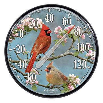 "AcuRite 12.5"" Cardinals Thermometer"