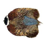 Wapsi Ringneck Pheasant Whole Skin Fly Tying Material