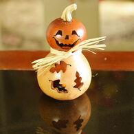 Meadowbrooke Gourds Dexter Miniature Jack-O'-Lantern