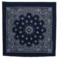 Wilcor Men's & Women's Blue Paisley Cotton Bandana