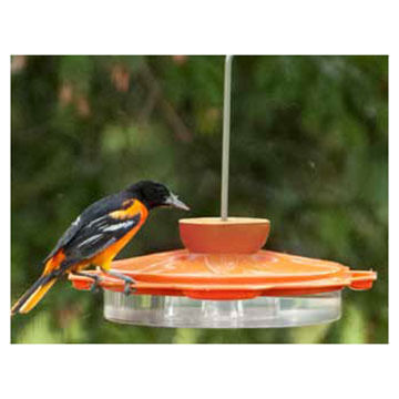 Audubon 3-in1 Oriole Dish Bird Feeder
