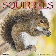 Willow Creek Press Squirrels 2020 Wall Calendar
