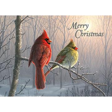 LPG Greetings Cardinal Couple Boxed Christmas Cards