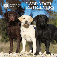 AKC Labrador Retrievers 2018 Wall Calendar by Zebra Publishing