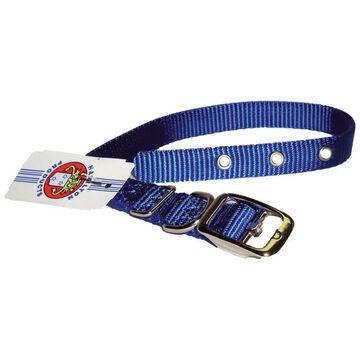 Hamilton Single Thick Nylon Dog Collar
