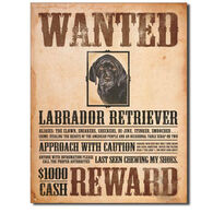 Desperate Enterprises Black Lab Wanted Tin Sign