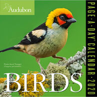 Audubon Birds 2020 Page-A-Day Calendar by Workman Publishing