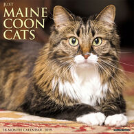 Willow Creek Press Just Maine Coon Cats 2019 Wall Calendar