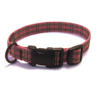 Bison Designs 19mm Adjustable Dog Collar