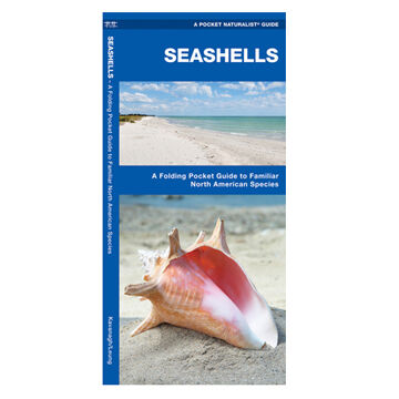 Seashells: A Folding Pocket Guide to Familiar North American Species by James Kavanagh