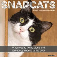 Willow Creek Press Snapcats 2020 Wall Calendar