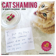 Willow Creek Press Cat Shaming 2019 Wall Calendar