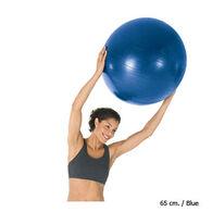 Bollinger Pro Body Ball