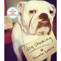 Dog Shaming by Pascale Lemire
