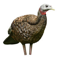 Avian-X LCD Breeder Turkey Decoy