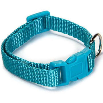 Zack & Zoey Nylon Dog Collar