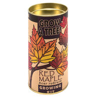 Channel Craft Grow A Tree Kit - Red Maple