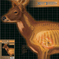 Champion X-Ray Paper Target - 6 Pk.