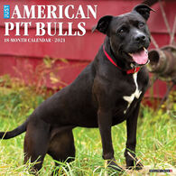 Willow Creek Press Just American Pit Bull Terriers 2021 Wall Calendar