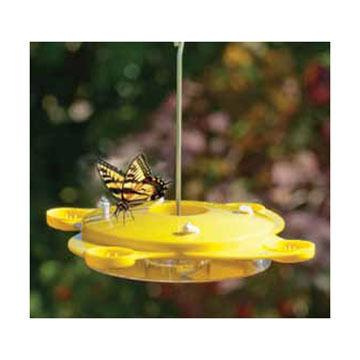 Audubon Fruit & Wick Butterfly Feeder