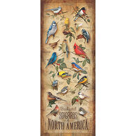 Wild Wings Backyard Songbirds Of North America Wood Sign