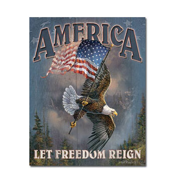 Desperate Enterprises Let Freedom Reign Tin Sign