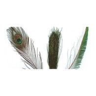 Wapsi Peacock Sword Fly Tying Material