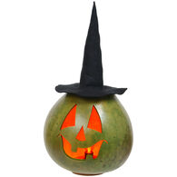 Meadowbrooke Gourds Ursula Large Tall Lit Witch
