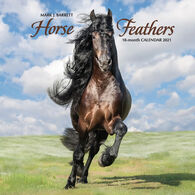 Willow Creek Press Horse Feathers 2021 Wall Calendar