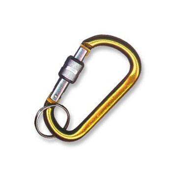 Bison Designs Locking Carabiner Keychain