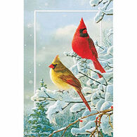 Pumpernickel Press Winter Color Deluxe Boxed Greeting Cards
