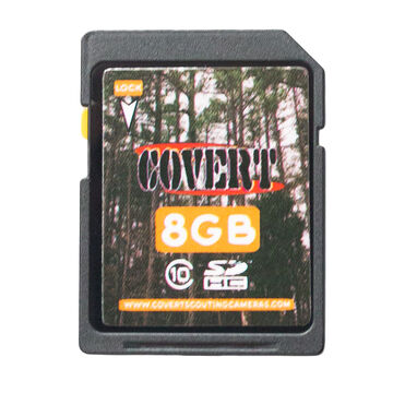 Covert SD Memory Card