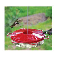Audubon Classic Hummingbird Dish Feeder