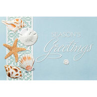 Pumpernickel Press Sea Lover's Shells Deluxe Boxed Greeting Cards