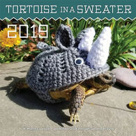 Tortoise in a Sweater 2019 Wall Calendar by Editors Of Rock Point