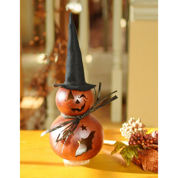 Meadowbrooke Gourds Reba Miniature Witch Gourd