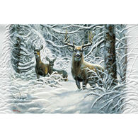 Pumpernickel Press Winter Lace Deluxe Boxed Greeting Cards