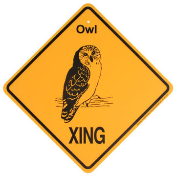KC Creations Owl XING Sign