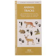 Animal Tracks by James Kavanagh