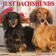 Willow Creek Press Just Dachshunds 2019 Wall Calendar