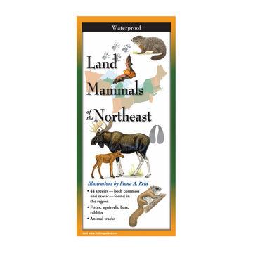 Land Mammals of the Northeast: FoldingGuides