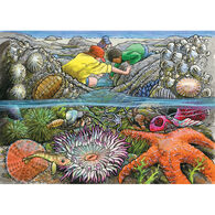 Outset Media Tray Puzzle - Exploring the Seashore