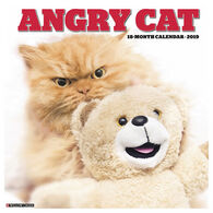 Willow Creek Press Angry Cat 2019 Wall Calendar