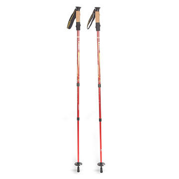 Mountainsmith Pyrite Trekking Pole - 1 Pair