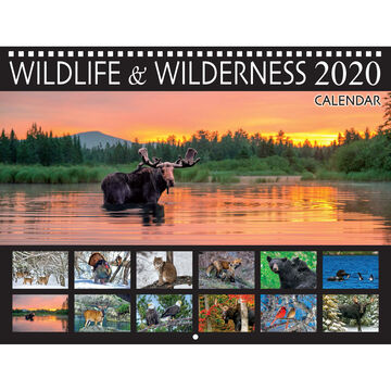 Maine Scene Maine Wildlife and Wilderness 2020 Wall Calendar