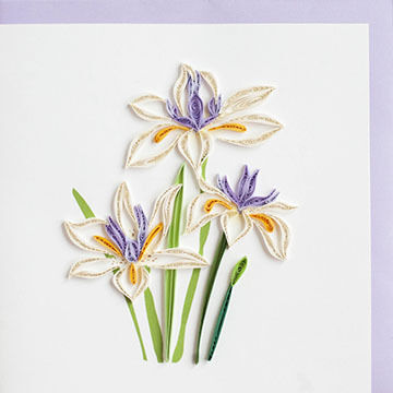Quilling Card Water Iris Everyday Card