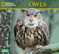 National Geographic Owls 2019 Wall Calendar by Zebra Publishing