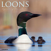 Willow Creek Press Loons 2021 Wall Calendar