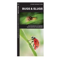 Bugs & Slugs: An Introduction to Familiar North American Invertebrates By James Kavanagh
